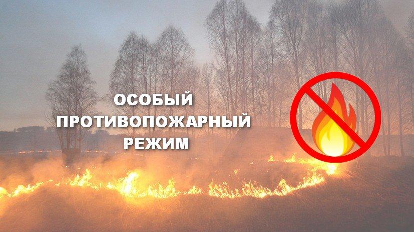 Особый противопожарный режим сняли в Приморье
