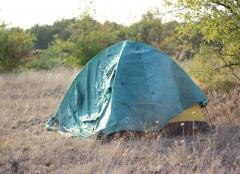 Появились подробности исчезновения трех детей в лесах Приморья