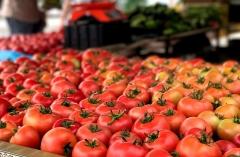 Выставка приморских продуктов питания будет работать два дня в Приморье