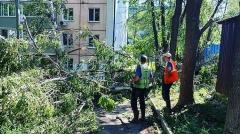 В Артёме устраняют последствия тайфуна «Майсак»