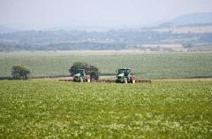 Почти 60 тысяч тонн зерна собрали сельхозпроизводители Приморья