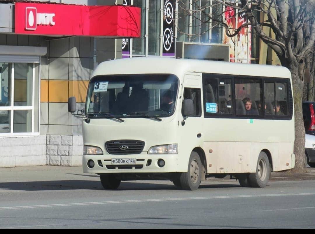 Жестко задержали угонщика рейсового автобуса в Приморье
